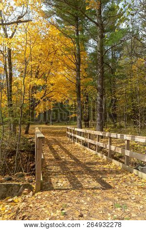 Beautiful Golden Autumn Landscape And Wooden Bridge