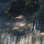 Haze in the early morning light over the river poster