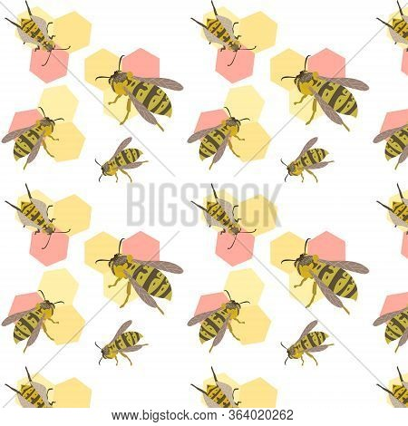 Wasp Vector Seamless Pattern Illustration Colorful Wasp Wildlife Insect
