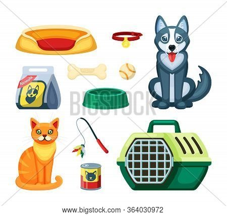 Pet Shop Set. Assortment For Cat And Dog, Toy, White Ball, Rubber Bone, Canned And Dry Food With A P