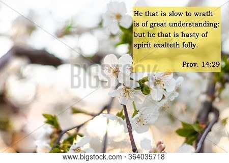 Bible Quotes On Blurred Nature Background. Card With Text Sign For Believers. Inspirational Verse Th