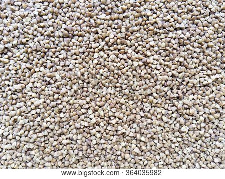 Food Texture Background From Brown Buckwheat. Stock Photo.