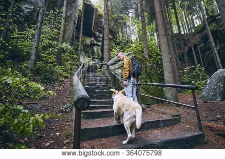 Man With His Dog On Stone Stairs To Rock Formations In The Middle Of Forest. Hruba Skala In Bohemian