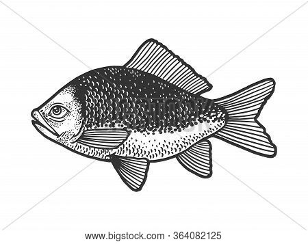 Fish With Human Eye Sketch Engraving Vector Illustration. T-shirt Apparel Print Design. Scratch Boar