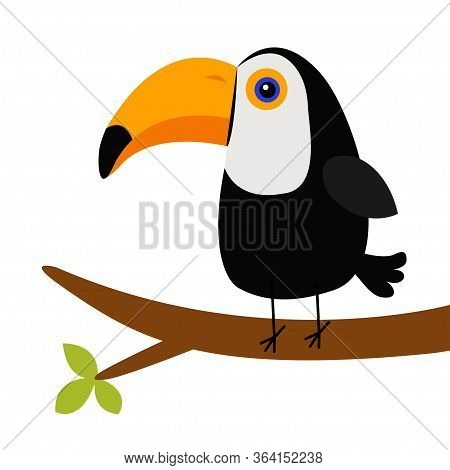 Cute Toucan Toco On The Tree Brunch. Big Yellow Beak Icon. Beautiful Exotic Tropical Bird. Zoo Baby