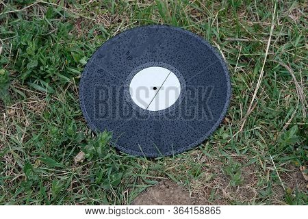 Black Vinyl Record On The Grass. Old Musical Record Covered With Raindrops. Old Vinyl Record Thrown