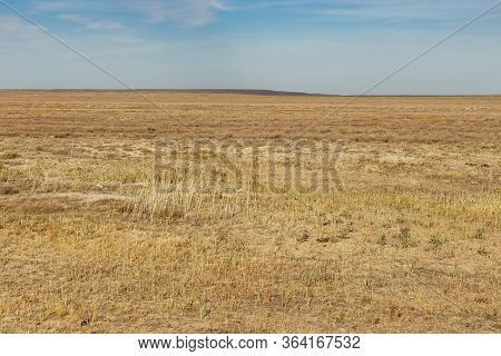 Empty Steppe In Kazakhstan. Dry Grass In The Autumn Steppe. Landscape.
