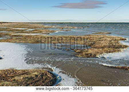 Lake Kamyslybas Is A Large Saltwater Lake In Kazakhstan. Seaweed On The Beach.