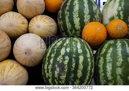 Bright Colorful Fruits On Counter Of Farmers Market Watermelons, Melons. Vegetables Are Source Of Vi