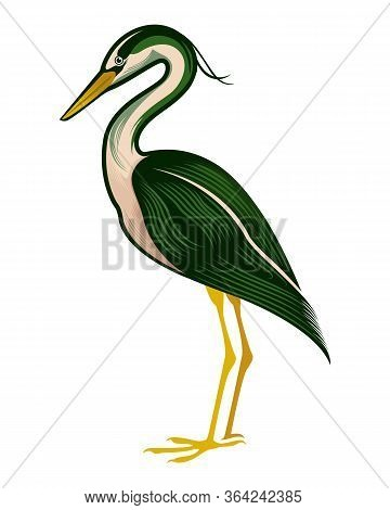 Stork Isolated On White Background, Standing Stork In Flat Style