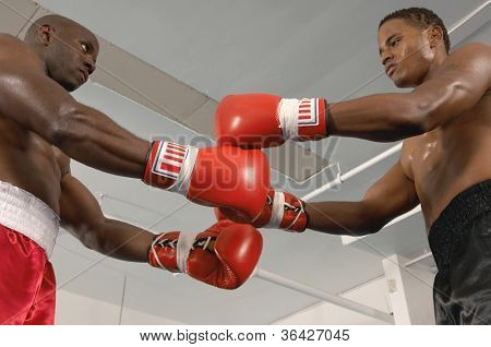 Low angle view of two boxers before the start of a match