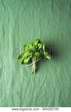 Fresh Basil Bundle On A Green Fabric Background. Organic Homegrown Plants. Aromatic Herbs. Flavored