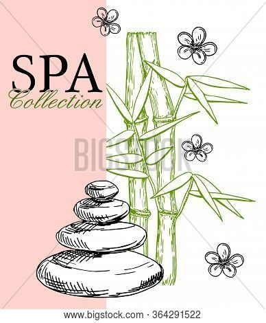 Spa Poster, Banner Template. Vector Sketch Spa Center And Ink Hand Drawn Spa Salon Items. Design For