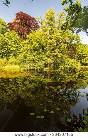 Lake With Trees Reflected On Water Ground During Springtime Day With Clear Sky In Public Park With C