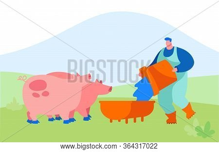 Young Man Feeding Pigs Putting Grain In Trough. Male Farmer Character At Work Process Caring Of Dome