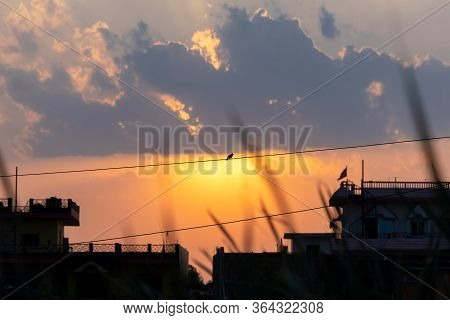 Silhouetted Red Whiskered Bulbul Sitting On Wire Against The Sunset.
