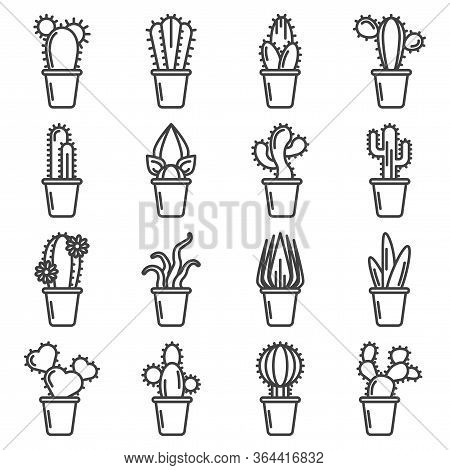 Cactus Icons Set. A Simple Linear Image Of Various Varieties Of Cacti In Pots. Isolated Vector On A