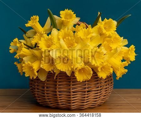 A Bouquet Of Daffodils Close-up In A Wicker Basket. White Daffodils With A Yellow Middle, Useful For