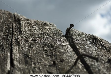 Old Rotten Wooden Roof With A Nail On The Sky Background, Old  Damaged Board On A Sunny Day, Prospec