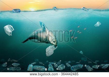 3d Rendering Of Sea Lion Eating Garbage Bag In Ocean Full Of Plastic Trash To Illustrate Marine Poll