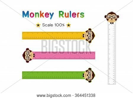 Monkey Head Of Rulers Inch And Metric Rulers. Scale For A Ruler In Inches And Centimeters. Centimete