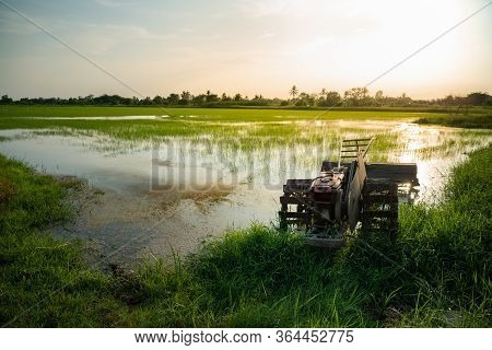 Old Tiller Or Walking Tractor In Rice Field In Sunset. Agricultural And Farming Concept.