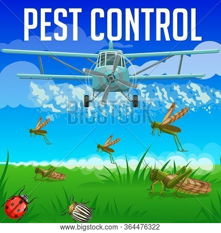 Locust, Grasshopper, Ladybug And Colorado Beetle Pest Control. Aerial Insecticide And Pesticide Disi