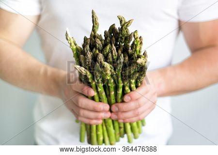Bundle Of Green Asparagus In Hands Of Man Farmer. Mens Hands Picking Bunch Of Fresh Asparagus. Healt