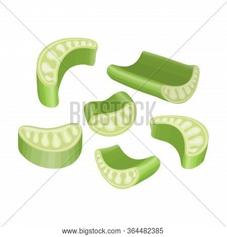 Piece Celery Vector Icon.cartoon Vector Icon Isolated On White Background Piece Celery.
