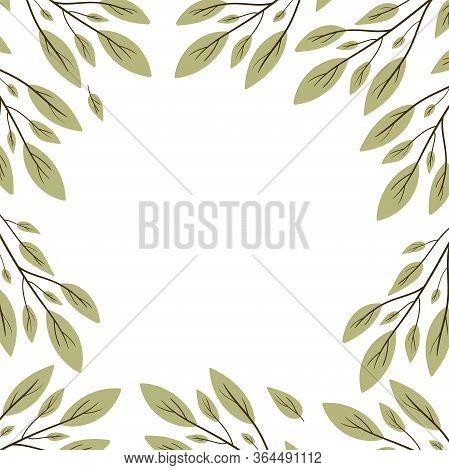 Vector Frame Botanic. Leaf Branches. Illustration Isolated On White Background. Hand Draw.