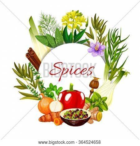 Seasonings And Food Cooking Flavorings, Vector Herbal Condiments. Farm Grown Herbal Seasonings Cinna
