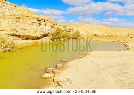 View Of Water Pond And Landscape In The Holot Tsivoniyim (colorful Sand) Site, Part Of Makhtesh (cra