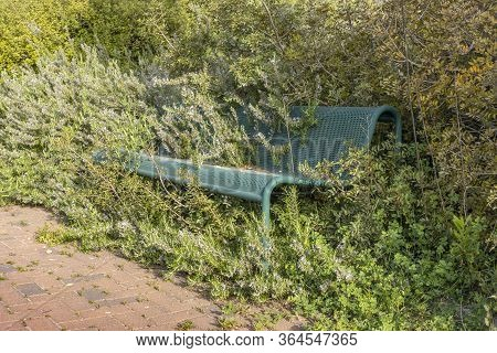 A Park Bench, Deserted Due To Corona Limitations, While Nature Reclaims Its Space And Vegetation Gro