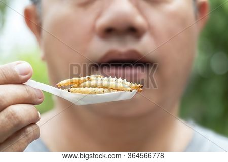 Food Insects: Man Eating Bamboo Worm Insect On Spoon. Bamboo Caterpillar Is Good Source Of Protein E