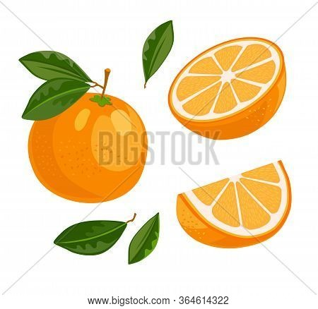 Juicy Bright Orange Set. Whole Fruit With Green Leaf, Half Cut, Slice. Vector Illustration For Organ