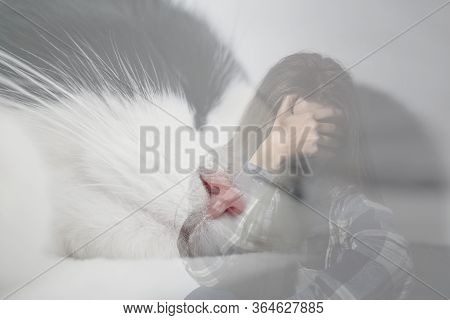 Woman Suffering From Ailurophobia On White Background. Irrational Fear Of Cats