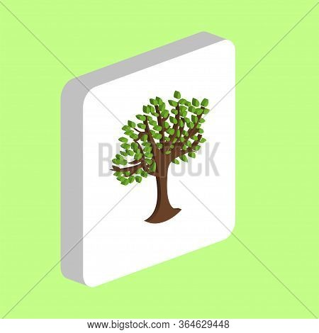 Maple Tree With Leaves Simple Vector Icon. Illustration Symbol Design Template For Web Mobile Ui Ele