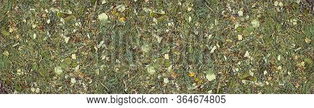 Wild Herbs And Leaves Creative Wide Texture. Natural Plant Flat Lay Pattern. Nature Large Background