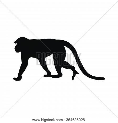 Walking Apes Monkey With Silhouette And Line Art, Ape, Chimpanzee,