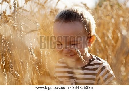 Portrait Of Little Laughing Boy Among Ears Of Wheat Field, Closeup. Happy Child With Closed Eyes, Be
