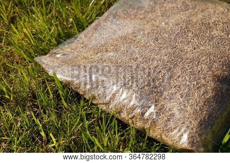 Sowing Grass, Setting Up A Lawn. Foil Packaging With Grass Seeds.