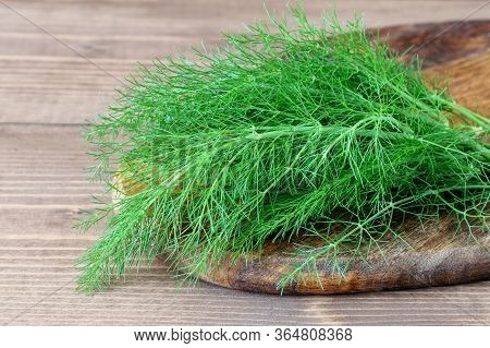 Fresh Green Dill On The Wooden Background. Healthy Herbal Condiment Dill.