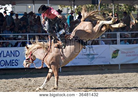 SAN JUAN CAPISTRANO, CA - AUGUST 25: unidentified cowboy competes in the saddle bronc riding event at the PRCA Rancho Mission Viejo rodeo in San Juan Capistrano, CA on August 25, 2012.