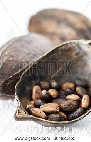 Cocoa Pods On White Wooden Table