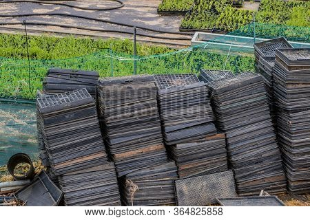 Plastic Seed Trays For Rice Seedling And Vegetable Sprout Germination.