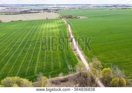 Aerial View Of Rural Area With Green Cultivated Fields In Sunny Spring Day