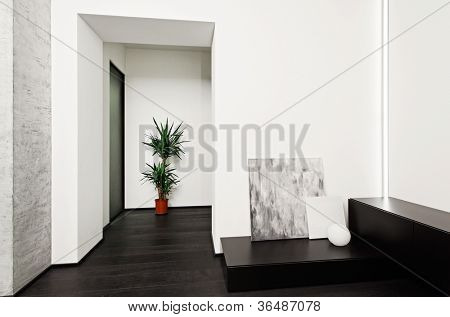 Modern minimalism style hall interior in black and white tones