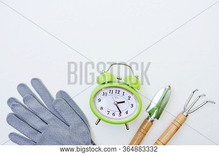 Garden Tools And Clock Alarm On White Background. Potted Plants. Home Garden Concept. Spring Season.