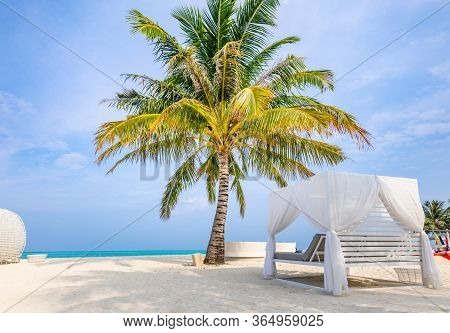 Canopy On Exotic Beach Scene With Palm Trees And White Sand. White Beach Canopies. Luxury Beach Tent