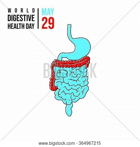 World Digestive Health Day. Celebrate On 29 May. Digestion System Design. Vector Illustration.